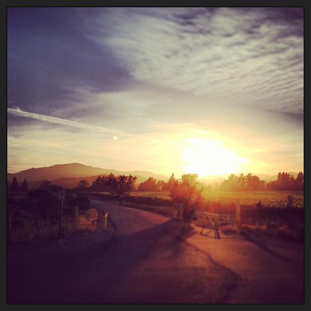 The sun sets over the winding roads through California wine country.