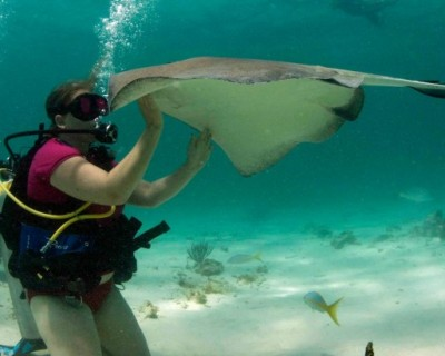 Scuba, Grand Cayman: How I Dove In and Fell in Love