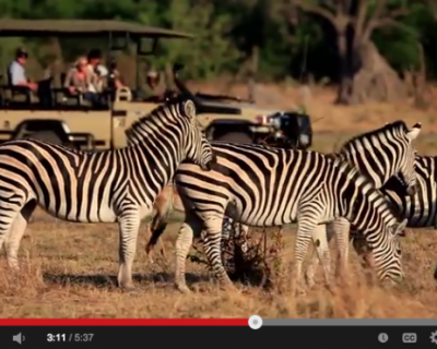TRAVEL VIDEO: Michaela's Map: Zimbabwe, Up Close and Personal